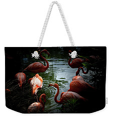 Weekender Tote Bag featuring the photograph Flamingos by Eric Christopher Jackson