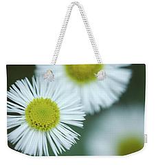 Fleabane Flowers Weekender Tote Bag
