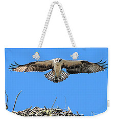 Weekender Tote Bag featuring the photograph Flegeling Osprey by Debbie Stahre