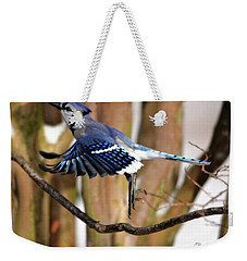 Flight Of The Blue Jay Weekender Tote Bag