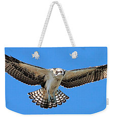 Weekender Tote Bag featuring the photograph Flight Practice Over The Nest by Debbie Stahre