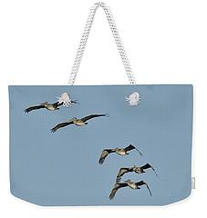 Flock Of 5 Pelicans  Weekender Tote Bag