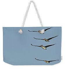 Flock Of Brown Pelicans Weekender Tote Bag