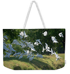 Flock Of Egrets In Flight Weekender Tote Bag