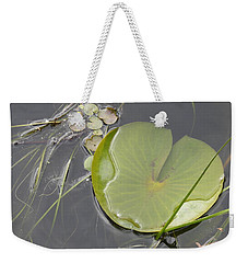 Weekender Tote Bag featuring the photograph Flooded Pad by Betty-Anne McDonald