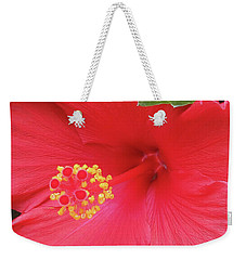 Floral Beauty 2 Weekender Tote Bag by Vickie G Buccini