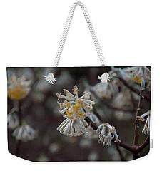 Weekender Tote Bag featuring the painting Floral Print 099 by Chris Flees