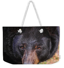 Florida Black Bear Weekender Tote Bag