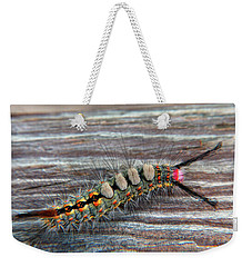 Florida Caterpillar Weekender Tote Bag by Hanny Heim