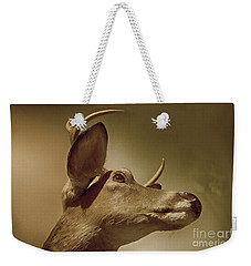Weekender Tote Bag featuring the photograph Florida Deer by Judy Hall-Folde