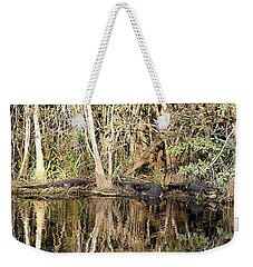 Weekender Tote Bag featuring the photograph Florida Gators - Everglades Swamp by Jerry Battle