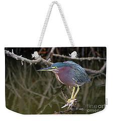 Florida Green Heron Weekender Tote Bag