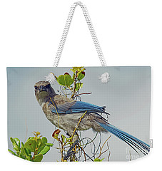 Florida Juvie Scrub Jay Weekender Tote Bag