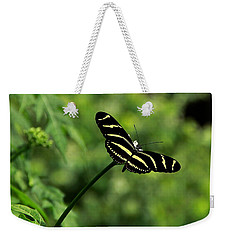 Florida State Butterfly Weekender Tote Bag by Greg Allore