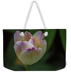 Weekender Tote Bag featuring the photograph Flower 654853 by Timothy Latta
