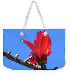 Flower And Sky Worship Weekender Tote Bag by Tina M Wenger