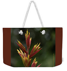 Weekender Tote Bag featuring the photograph Flower At Selby Gardens by Richard Goldman