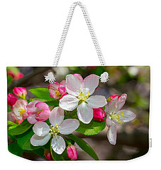 Flowering Cherry Tree Blossoms Weekender Tote Bag