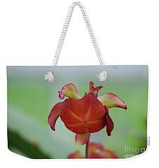 Flowering Red Adam's Pitcher Plant Weekender Tote Bag by DejaVu Designs