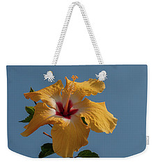 Flp-6 Weekender Tote Bag