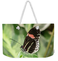 Flutterby Weekender Tote Bag by Cathy Donohoue