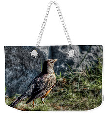 Weekender Tote Bag featuring the photograph Fly Robin Fly by Pennie  McCracken