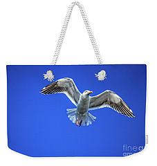 Flying Gull Weekender Tote Bag by Robert Bales