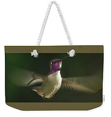 Flying Male Anna's Weekender Tote Bag