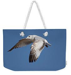 Flying Seagull Weekender Tote Bag