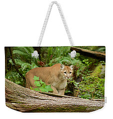 Focal Point Weekender Tote Bag