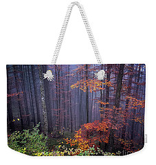 Weekender Tote Bag featuring the photograph Fog And Forest Colours by Elena Elisseeva