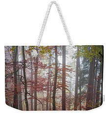 Weekender Tote Bag featuring the photograph Fog In Autumn Forest by Elena Elisseeva