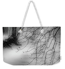 Weekender Tote Bag featuring the photograph Foggy Feeder by Kendall McKernon