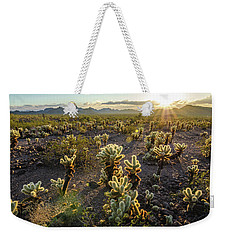 Weekender Tote Bag featuring the photograph Sea Of Cholla by Margaret Pitcher