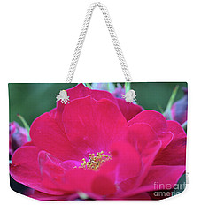 Weekender Tote Bag featuring the photograph For The Love Of Rose 8 by Victor K