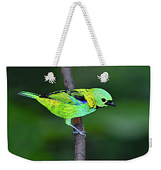 Forest Edge Weekender Tote Bag by Tony Beck