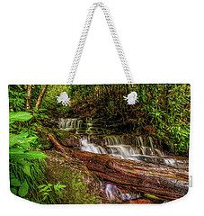 Weekender Tote Bag featuring the photograph Forest Falls by Christopher Holmes