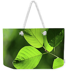 Forest Green 11 Weekender Tote Bag by Mary Bedy