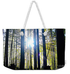 Forest Light Rays Weekender Tote Bag