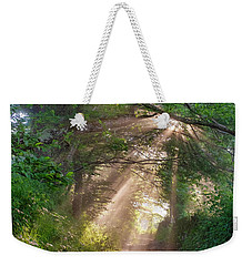 Weekender Tote Bag featuring the photograph Forest Trail by Fabrizio Troiani