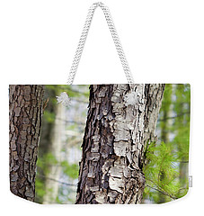 Weekender Tote Bag featuring the photograph Forest Trees by Christina Rollo
