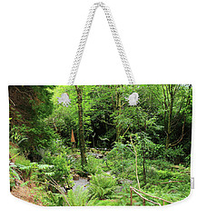Weekender Tote Bag featuring the photograph Forest Walk by Aidan Moran