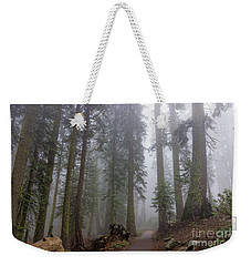 Weekender Tote Bag featuring the photograph Forest Walking Path by Peggy Hughes