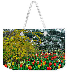 Weekender Tote Bag featuring the photograph Forsythia Tulips And Daffadils by Diana Mary Sharpton