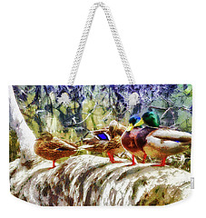 Weekender Tote Bag featuring the photograph Four Ducks On A Log by Joseph Hollingsworth