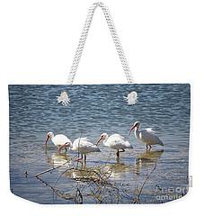 Four Ibises Walking In Water Weekender Tote Bag by Carol Groenen