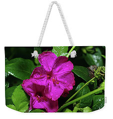 Weekender Tote Bag featuring the photograph Four O'clock At 9am  by Richard Rizzo