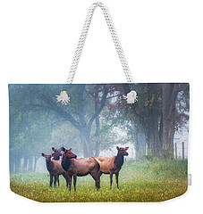 Weekender Tote Bag featuring the photograph Four Of A Kind by James Barber