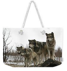 Four Pack Weekender Tote Bag by Shari Jardina