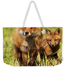 Fox Family Weekender Tote Bag by Mircea Costina Photography